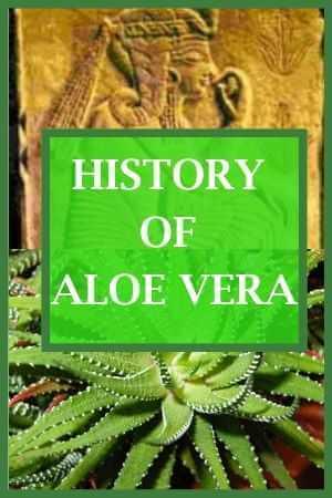 History Of Aloe Vera