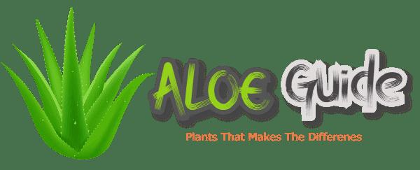 Aloe Guide