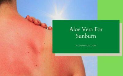 Best Guide Using Aloe Vera For Sunburn