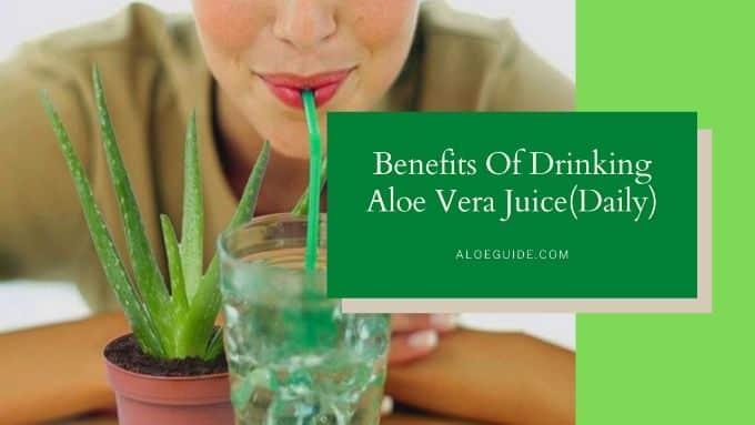 Drinking Aloe Vera Juice