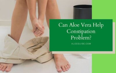 Aloe Vera For Constipation [Does it Really Works?]
