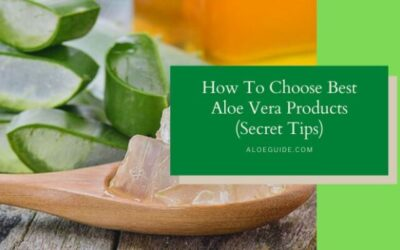 10 Skills How To Choose Best Aloe Vera Products (That Worth Your investment)