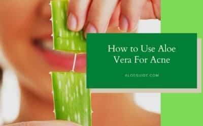 Aloe Vera For Acne Scars [Tips:2021]