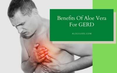 Aloe Vera For GERD [Benefits & Uses]