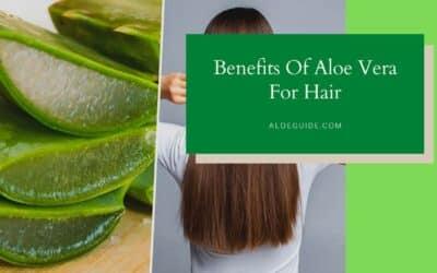 Benefits Of Using Aloe Vera For Hair