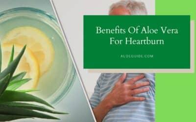 Aloe Vera For Heartburn
